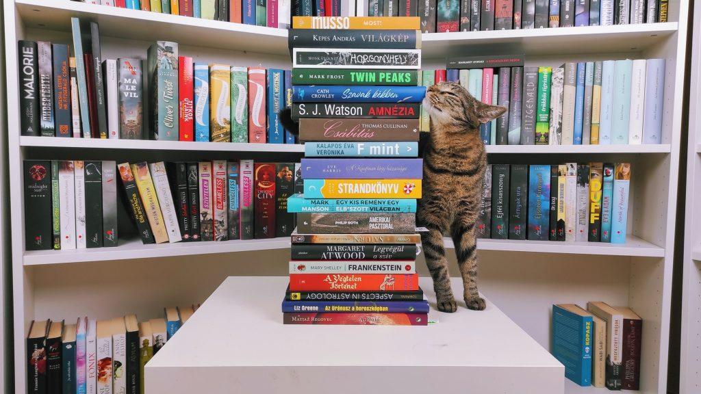 Júliusi beszerzések – új könyvek a polcomon, book haul, könyves beszerzés, könyvek és macska